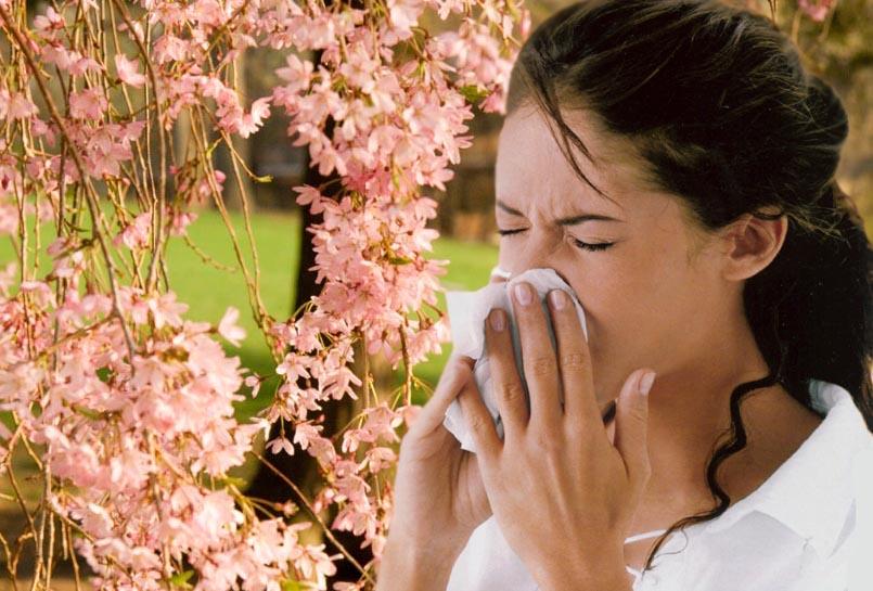 Рецепта против алергична хрема