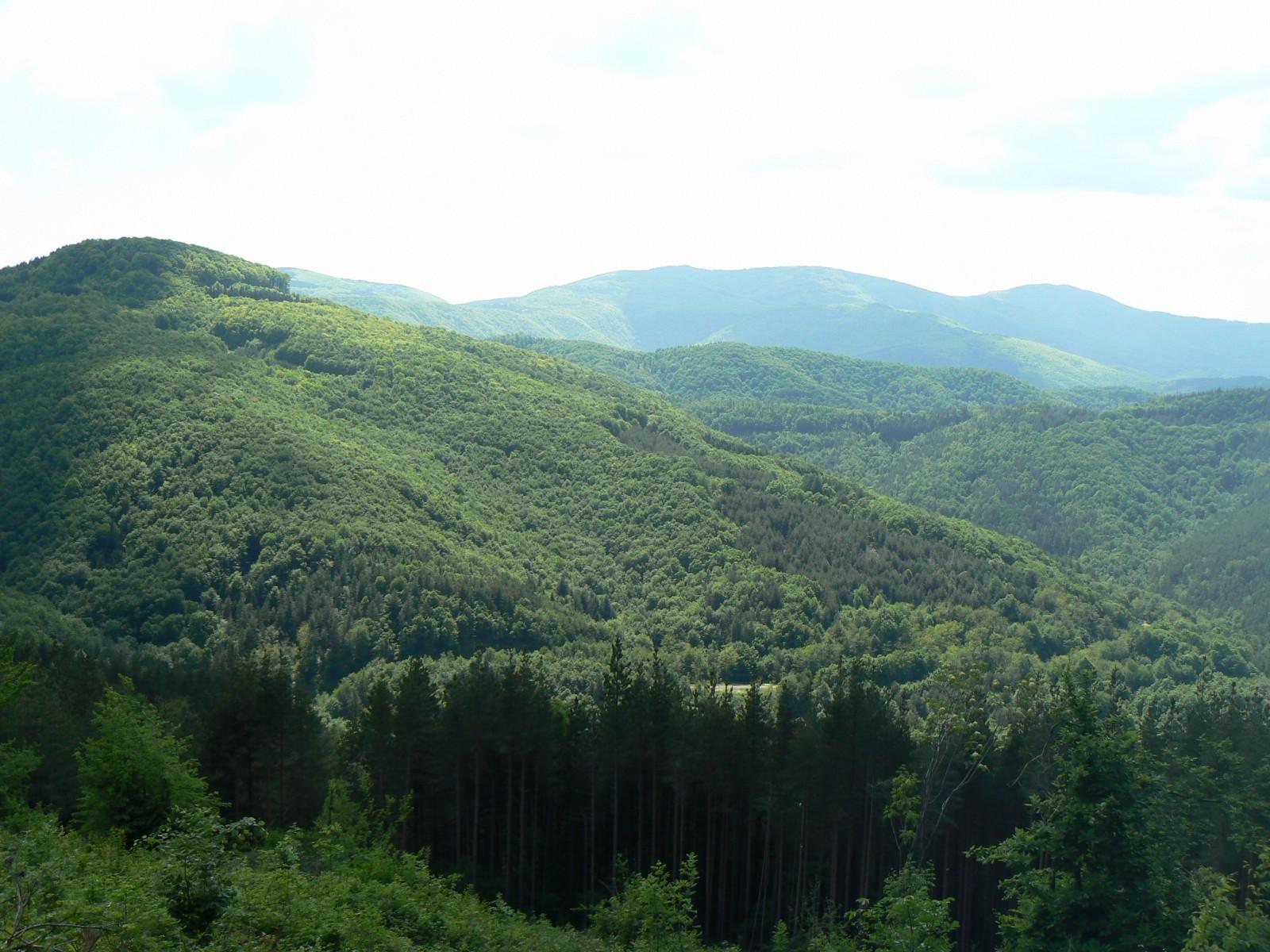 Еко пътека Бъзовец, регион Трявна